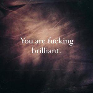 you are fucking brilliant