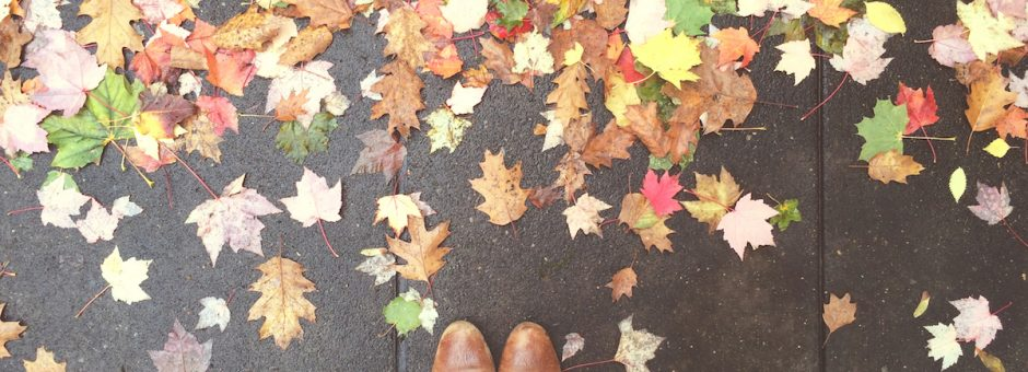 falling apart in the fall advice for difficult seasonal transitions - must love crows